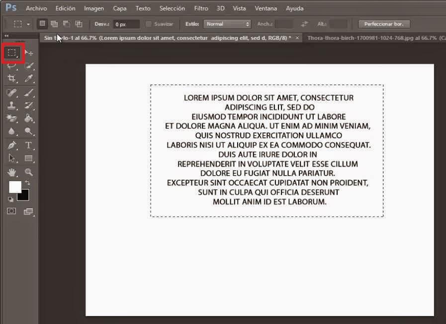 texto seleccionado con herramienta marco rectangular