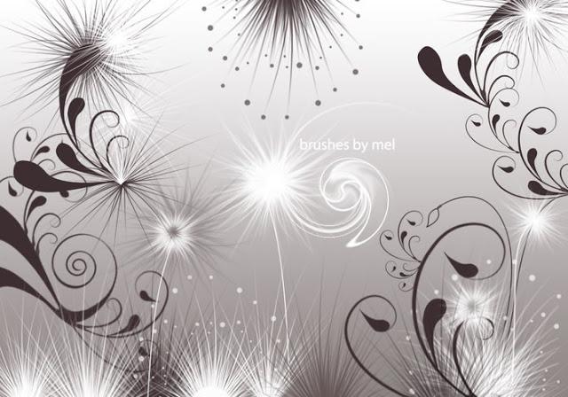 Photoshop Swirls And Seeds Brushes