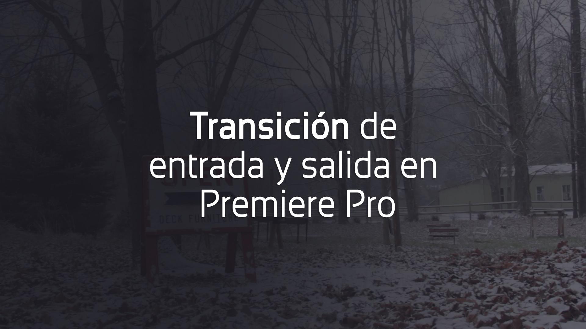 transición animación entrada salida premiere pro cover