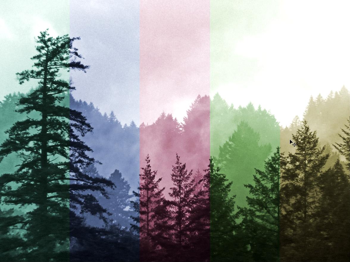efecto fotográfico de colores colores