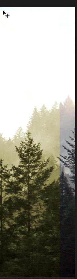 efecto fotográfico de colores sin color