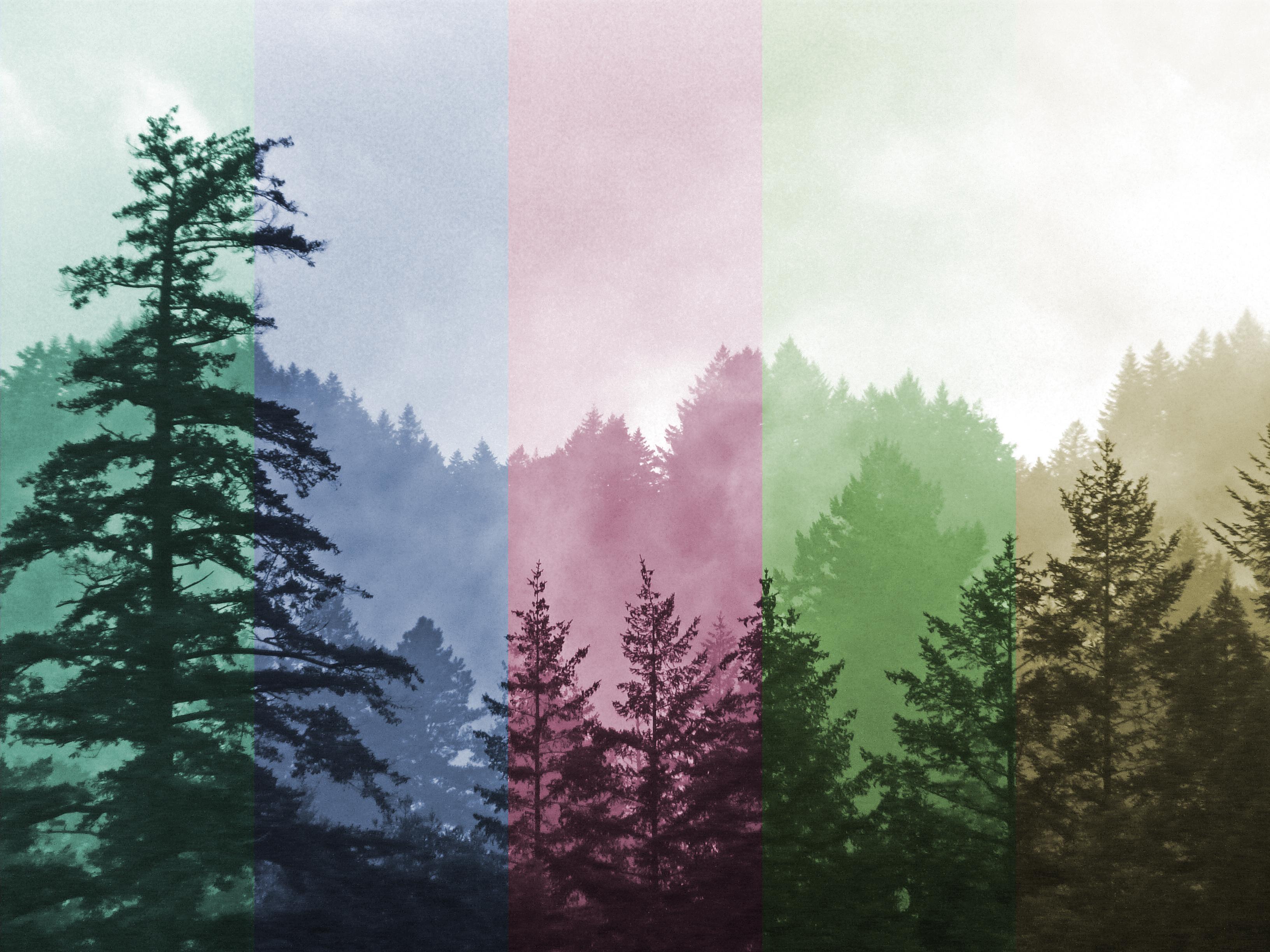 efecto fotográfico de colores resultado