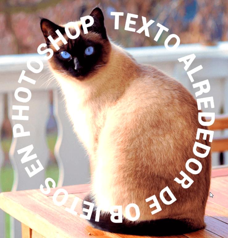 texto circular